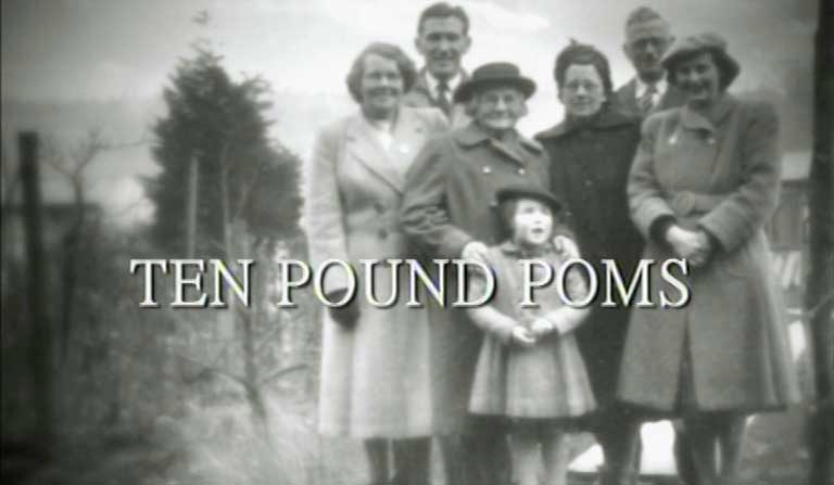ten pound poms