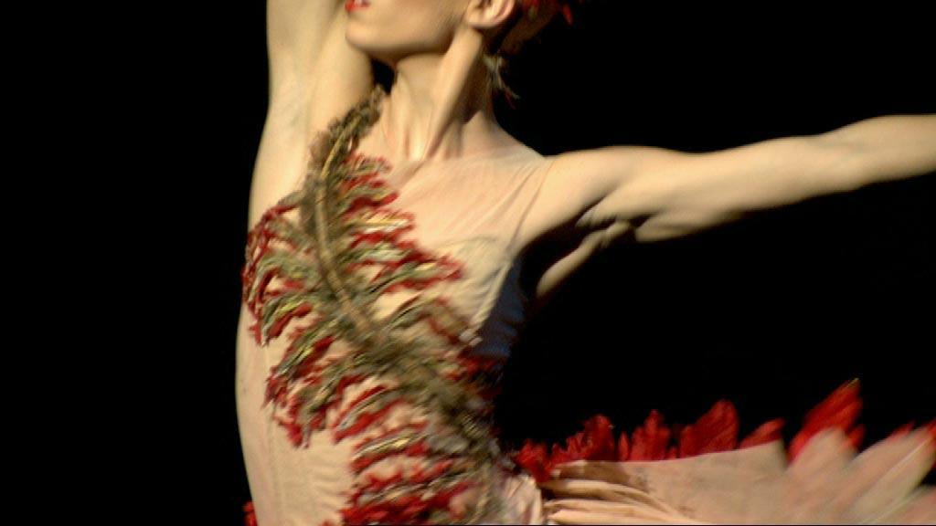 firebird - A Thousand Encores - The Ballets Russes in Australia