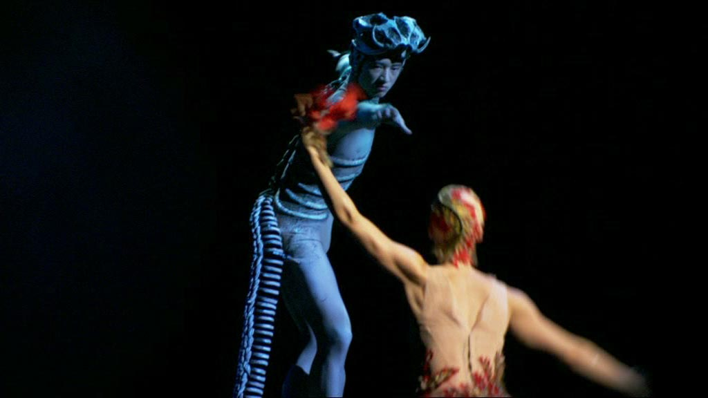 firebird - A Thousand Encores - The Ballets Russes in Australia