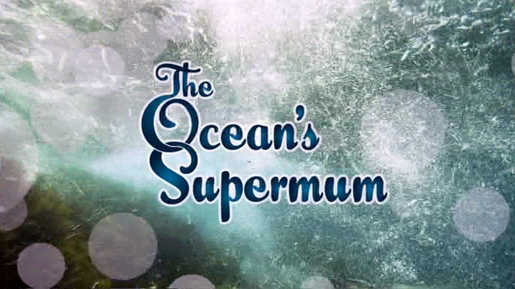 the oceans supermum