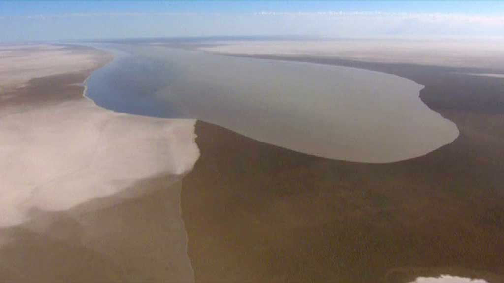 lake eyre - pelicans outback nomads