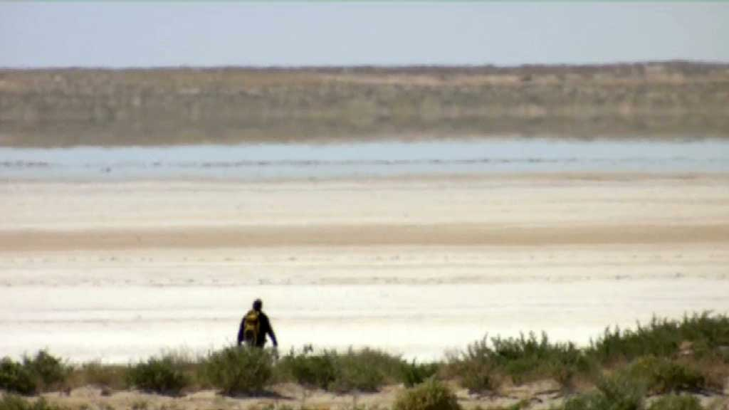 searching for bones - pelicans outback nomads