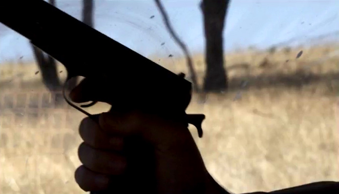 Trigger Point - Gun